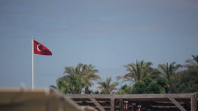 Turkish flag on a background of blue sky and palm trees.  stock video footage