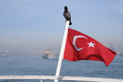 Turkish flag. Crow is sitting on turkish flag, also you can see the traditional turkish ferry Royalty Free Stock Image