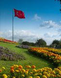 Turkish flag in the park stock photography