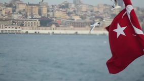 Turkish flag and seagull. Bosphorus stock footage