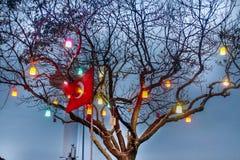 Turkish Flag & Tree Lights Uskudar Istanbul stock image