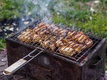 Turkish grill and grilled chicken meat. With smoke Stock Photography