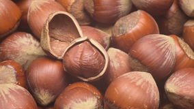 Turkish hazelnuts. A pile of shelled hazelnuts rotating at normal speed. Tripod used under studio lighting stock video