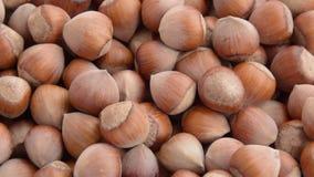 Turkish hazelnuts rotating stock video