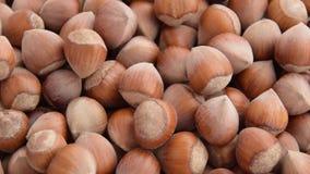 Turkish hazelnuts rotating stock video footage