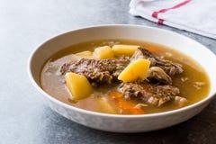 Turkish Kuzu Haslama/тушёное мясо овечки с картошками и морковью Стоковые Фото