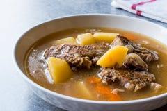 Turkish Kuzu Haslama/тушёное мясо овечки с картошками и морковью Стоковое фото RF