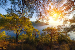 Turkish landscape, beach with green forest Stock Image