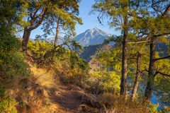 Turkish landscape with Olympos mountain, beach  green forest Stock Photo
