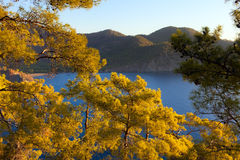 Turkish landscape with Olympos mountain, beach  green forest Stock Photos