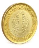 Turkish Lira Royalty Free Stock Photo