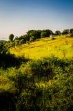 Turkish Natural Landscape Stock Photos