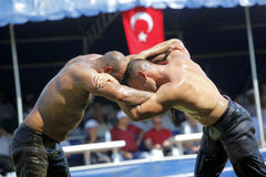 Turkish Oily Wrestling Royalty Free Stock Image