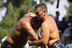 Turkish Oily Wrestling Stock Photos