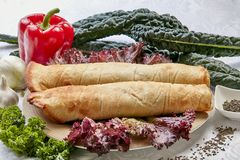 Turkish pizza. Roulette. Dish. Red. A delicious dish Stock Image