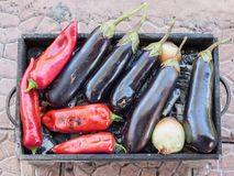 Turkish red pepper and aubergines cooked on mangal Royalty Free Stock Photos