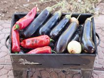 Turkish red pepper and aubergines cooked on mangal Stock Photos