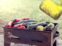 Turkish red pepper and aubergines cooked on mangal Royalty Free Stock Images
