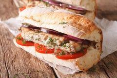 Turkish sandwich balik ekmek close-up. horizontal Royalty Free Stock Photo