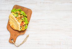 Turkish Sandwich Copy Space Royalty Free Stock Photography