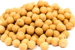 Turkish specific chickpeas Stock Photography