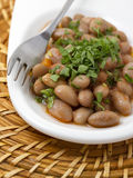 Turkish Starters : Beans Stock Photography