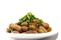 Turkish Starters : Beans on white plate Royalty Free Stock Images