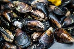 Stuffed mussels, turkish food Stuffed mussels, turkish food Fresh ...