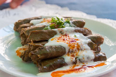 Turkish stuffed grape leaves Stock Photography
