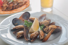 Turkish style stuffed mussels called midye dolma Stock Photography