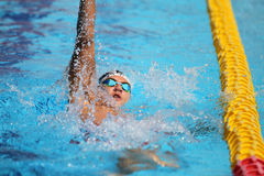 Turkish Swimming Championship Stock Photography