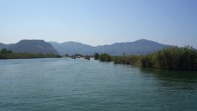 Turkish vast river journey along green coast view of Dalyan stock video