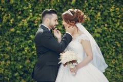 Turkish wedding Stock Image