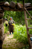 Turkish Woman Farming Royalty Free Stock Images