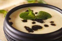 Turkish Yayla soup with mint and yogurt in a bowl macro. horizon Royalty Free Stock Photography