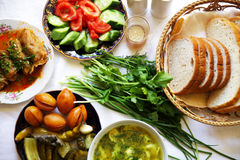 Turkisk asiatisk traditionell ramadan matpeppar som är välfylld med ris och köttfärs arkivbild