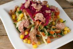 Turkisk sallad med tonfisk, röd kål, havre och andra grönsaker Royaltyfri Fotografi