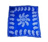 Turkiska orientaliska härliga scarves med bilder av naturligt silke på en vit bakgrund Royaltyfri Bild