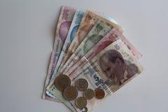 Turkiska pengar Royaltyfria Bilder