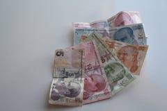 Turkiska pengar Royaltyfri Fotografi