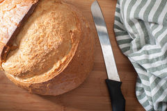 Turkiskt bröd Royaltyfri Foto