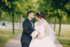 Turkiskt bröllop arkivbilder
