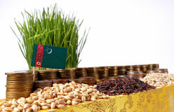 Turkmenistan flag waving with stack of money coins and piles of wheat Stock Photography