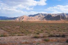 turkmenistan widok Zdjęcia Royalty Free