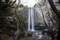 Turkmensk vattenfall, Aliaga izmir Vattenfall i djupt skoglandskap Arkivfoton