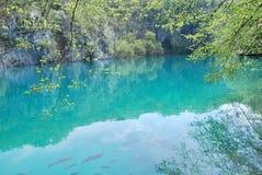 Turkoois-gekleurde die meren door tufa worden gescheiden, of travertijn, barrières stock fotografie