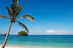 Turkoois oceaanwater en blauwe hemel met palm Stock Afbeeldingen