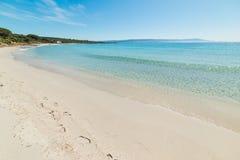 Turkoois water en wit zand in het strand van Le Bombarde in Alghero stock afbeelding