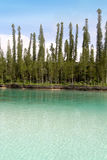 Turkooise natuurlijke pool Stock Foto