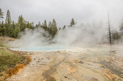 Turkooise pool in Yellowstone Stock Afbeelding